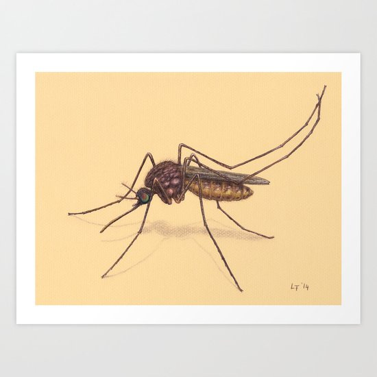 Mosquito by Lars Furtwaengler   Colored Pencil / Pastel Pencil   2014 Art Print