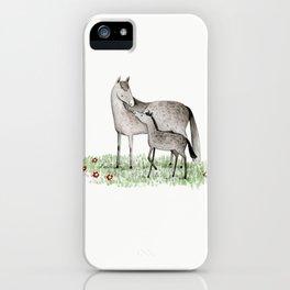 Mare & Foal iPhone Case