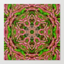 Vibrant surreal wattle kaleidoscope Canvas Print