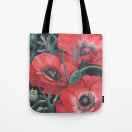 Poppies on Dark Background Tote Bag
