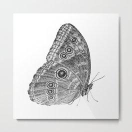Owl Butterfly Metal Print