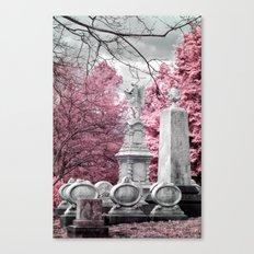 Heaven Sent Canvas Print
