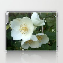 White Flower Laptop & iPad Skin