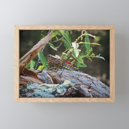 A Lubber in the Slough III Framed Mini Art Print