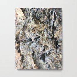 Needle frost Metal Print