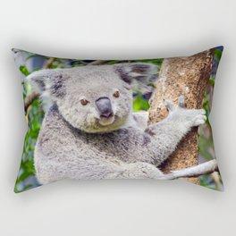 Australian Koala Bear Photo Rectangular Pillow