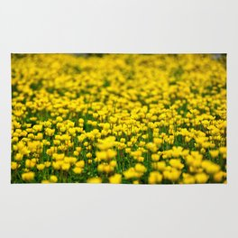 Small yellow wild flowers in the green field Rug