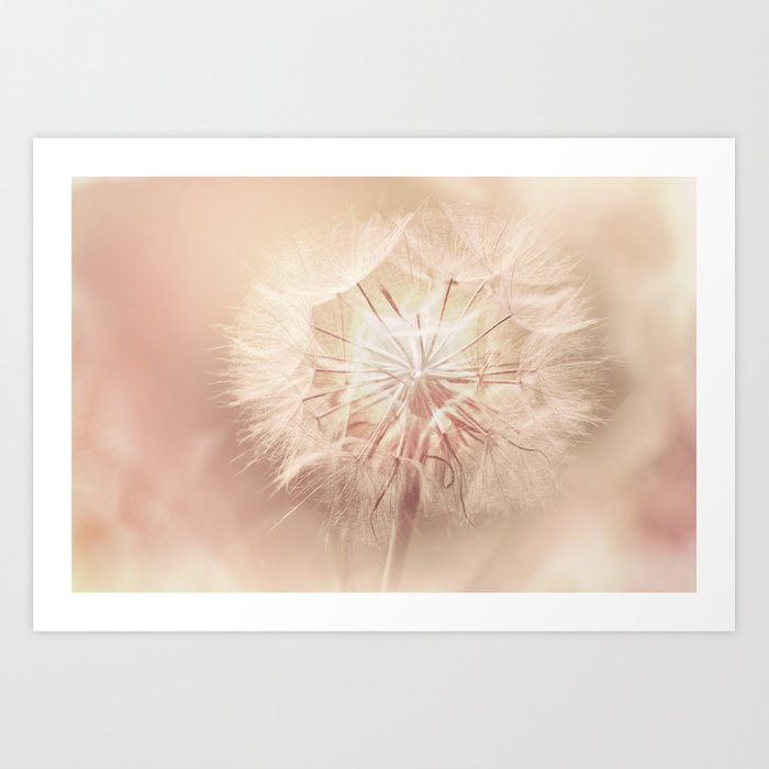 Pink Dandelion Flower - Floral Nature Photography Art and Accessories Art Print
