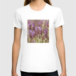 French Lavender (Lavandula stoechas) T-shirt