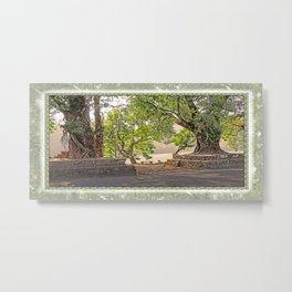 Tropical Hardwood Trees in Pokhara, Phewa Lake, Nepal Metal Print