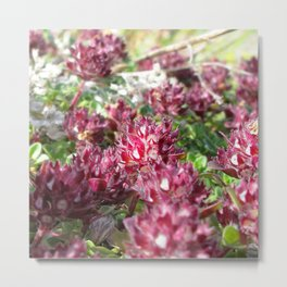 Watercolor Flower, Thrift 01, Northern Iceland Metal Print