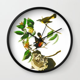 Vintage Scientific Bird & Botanical Illustration Wall Clock
