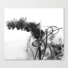Flowers in black Canvas Print