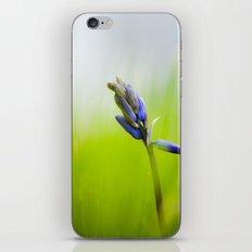 The Drifter iPhone & iPod Skin