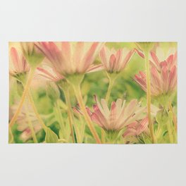 Vintage Spring Coral Pink Daisy Flowers Rug