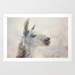 Alpaca in Machu Picchu Art Print