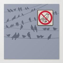 Birds Sign - NO droppings 1 Canvas Print