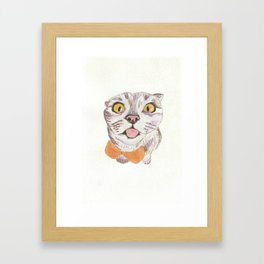 Irreverent Cat Framed Art Print