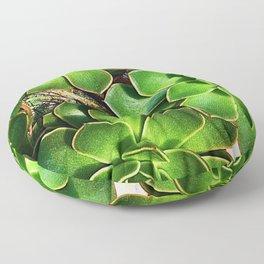 3 Succulents Floor Pillow