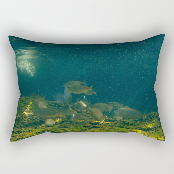 UNDERWATER VI. Rectangular Pillow