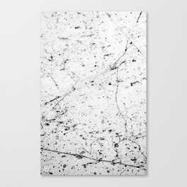 Speckle Marble Print Canvas Print