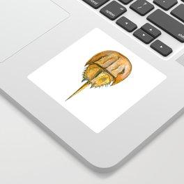 Brown Horseshoe Crab Sticker