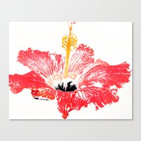 hibiscus Canvas Prints featuring Hibiscus by Regan's World