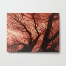 Under the willow Metal Print