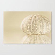 Sea Urchin No. 2 Canvas Print