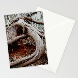 twisted roots, color photo Stationery Cards