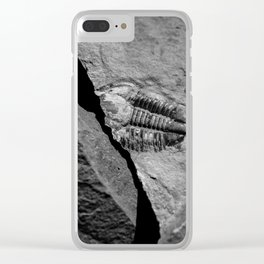 Utah - Trilobite Fossil Crack Clear iPhone Case