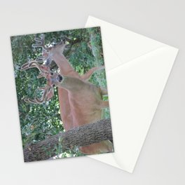 Up Close and Personal Stationery Cards