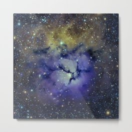 Pansy in Space Metal Print