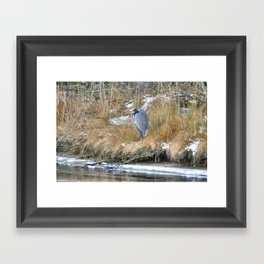 No One To Snuggle With Framed Art Print