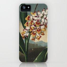 Henderson, Peter C. (d.1829) - The Temple of Flora 1807 - Nodding Renealmia iPhone Case