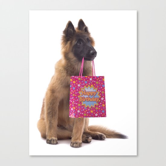 Birthday dog Canvas Print