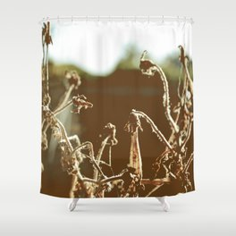 Dead can be Beautiful.. Shower Curtain