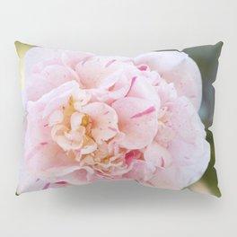 Strawberry Blonde Camellia Up Close Pillow Sham