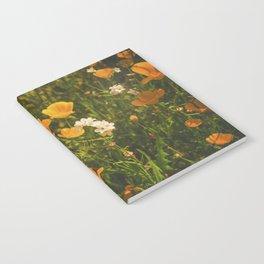 California Poppies 008 Notebook