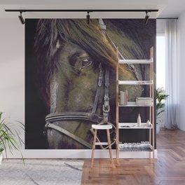 Black Stallion I Wall Mural