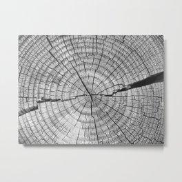 The Stump Monochrome Metal Print