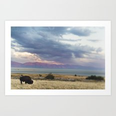 The Bison and The Desert Storm Art Print