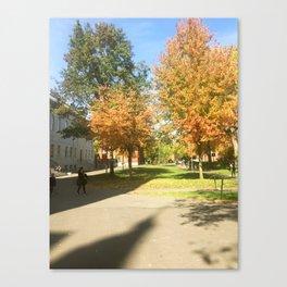Fall at Harvard Canvas Print