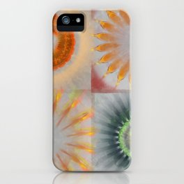 Untheologize Consonance Flowers  ID:16165-115853-31050 iPhone Case