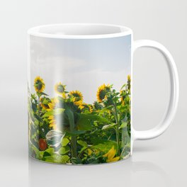 Sunflower Fields, 2014 Coffee Mug