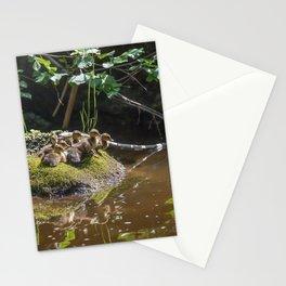 Mallard ducklings Stationery Cards