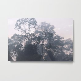The mysteries of the morning mist Metal Print