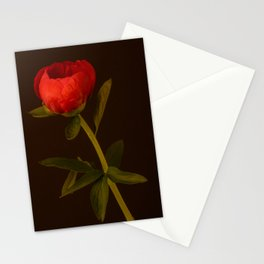 Red Peony - 1 Stationery Cards