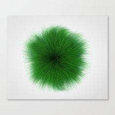 Green Fuzz Canvas Print