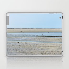 A flock of seagulls in the bay Laptop & iPad Skin